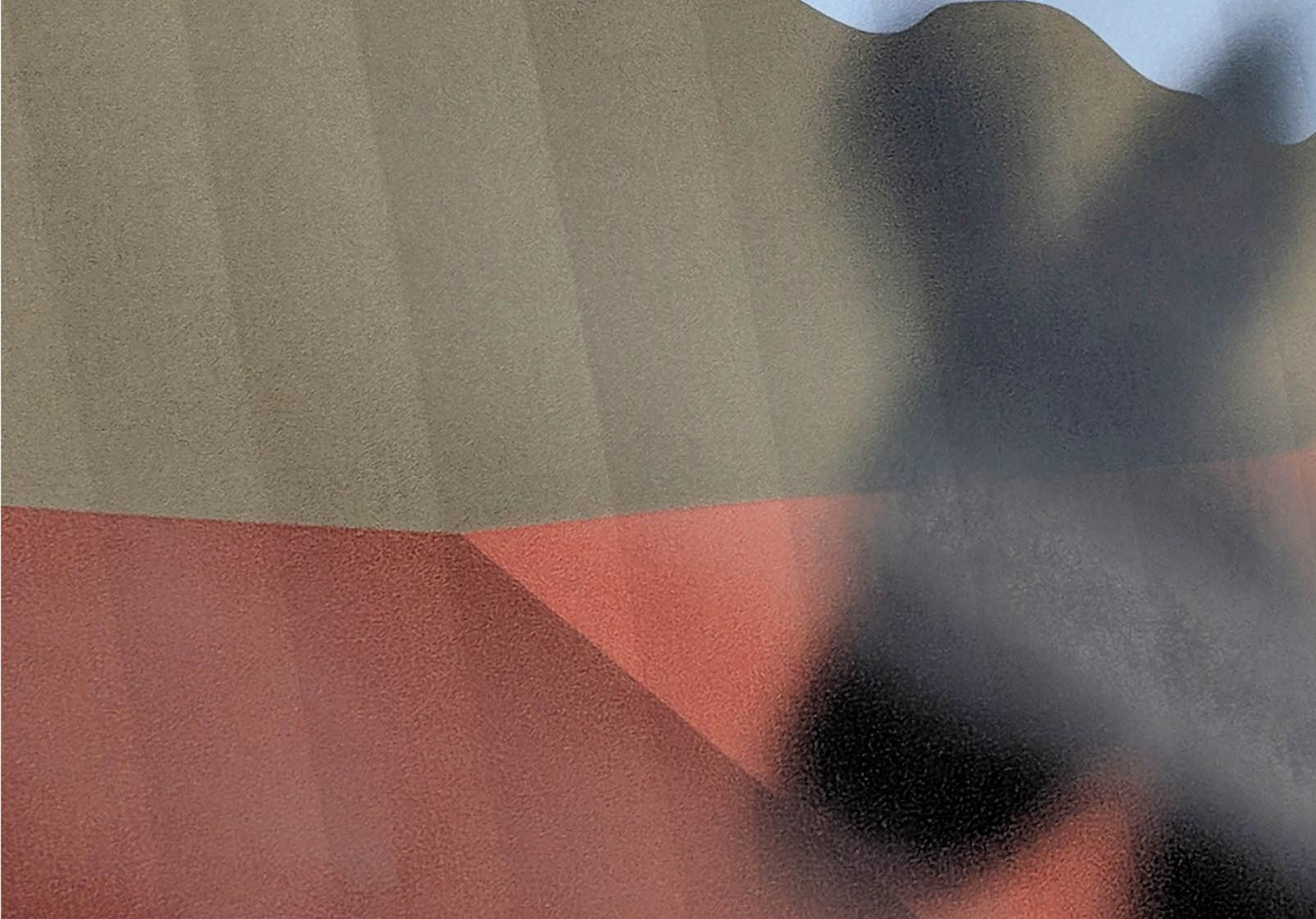 Kangaroo-banding_without_PrintFlat.jpg